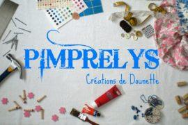 Bannière de blog Pimprelys