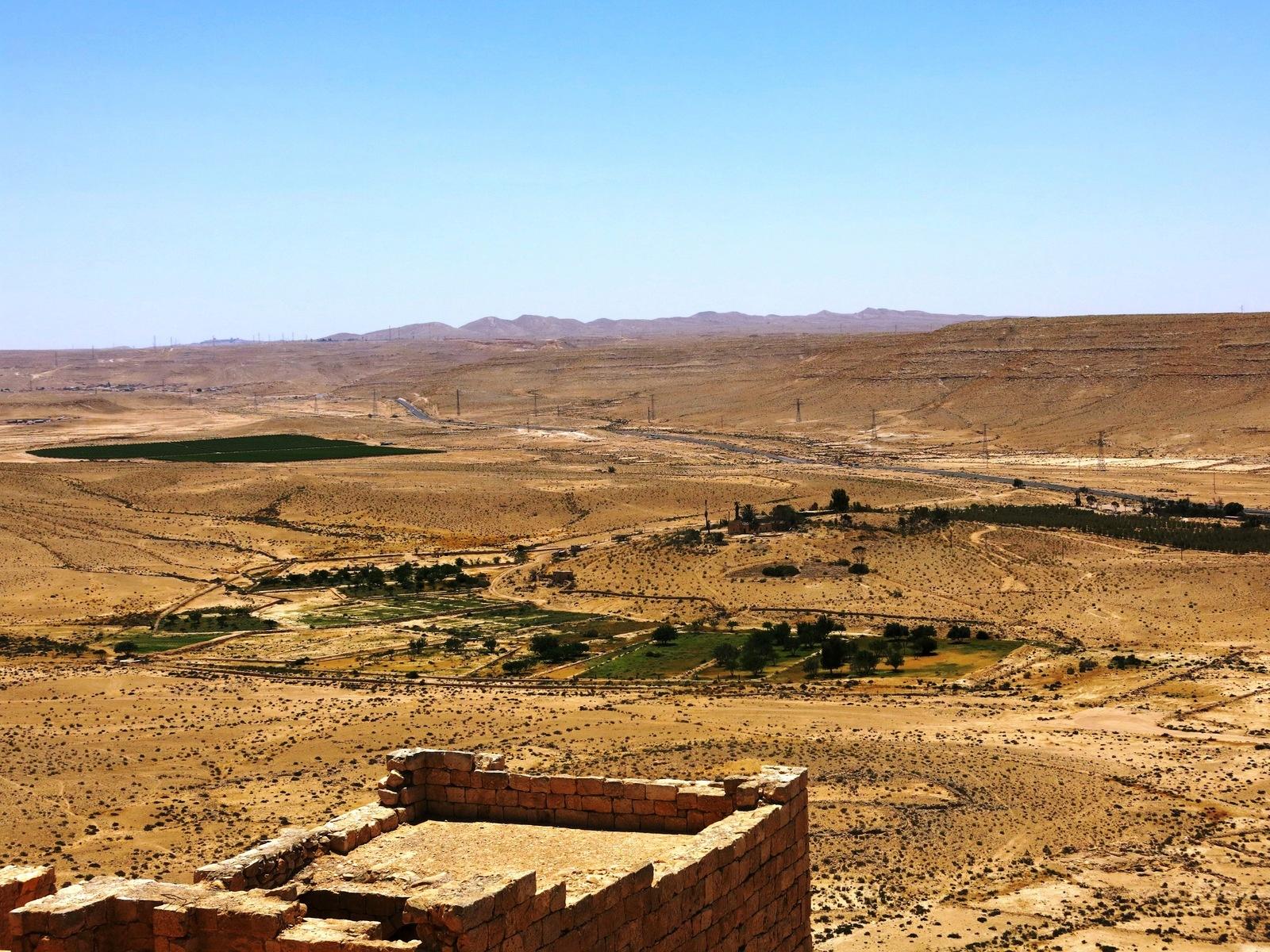 terre sainte israel monuments et lieux oasis dans le desert