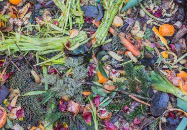 Compost zéro déchet
