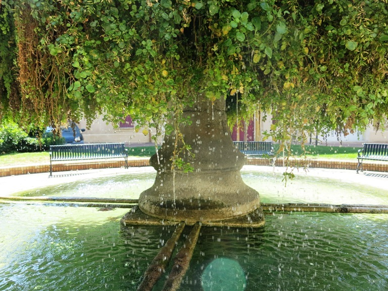 fontaine-moussue-2