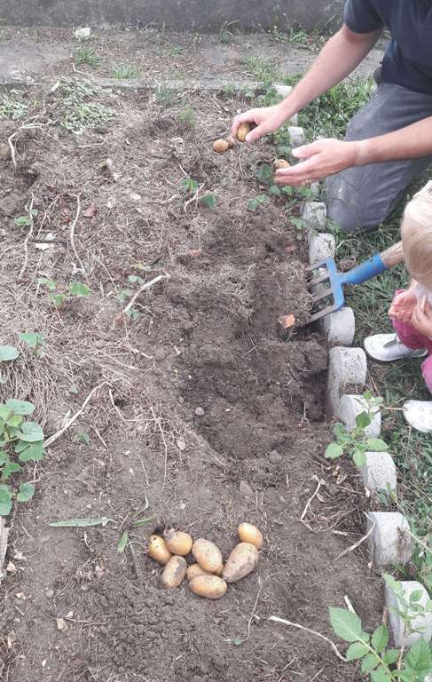 permaculture 23