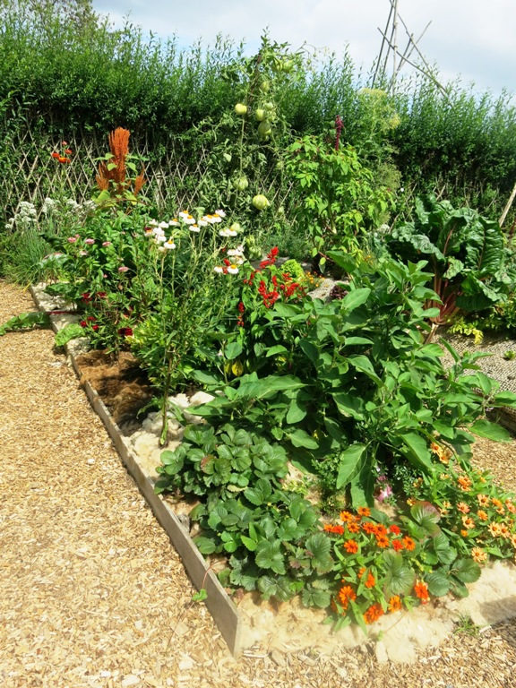 permaculture 36