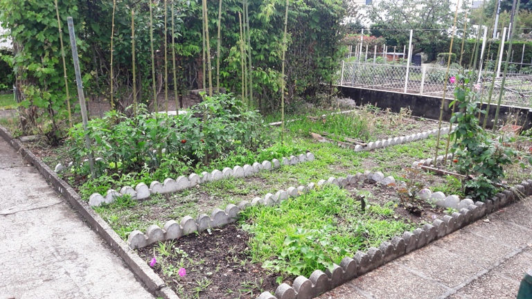 permaculture 7