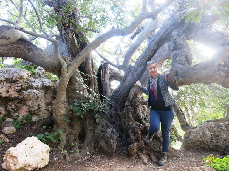 xemxija heritage trail Malte enceinte 2