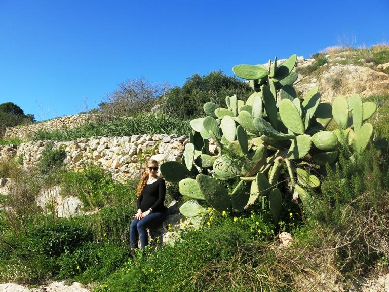 xemxija heritage trail Malte enceinte 7