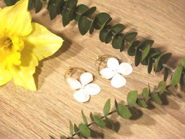 Bflower Fleurs stabilisées