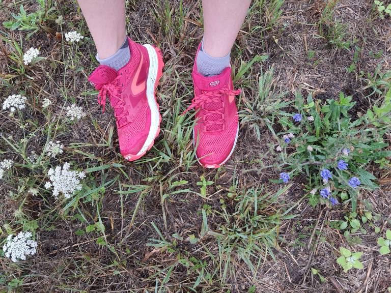 Chaussures de trail Pimprelys