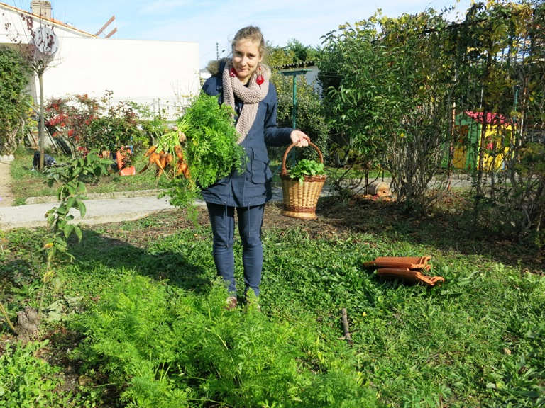 permaculture 27