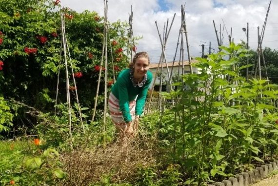 jardin potager pimprelys